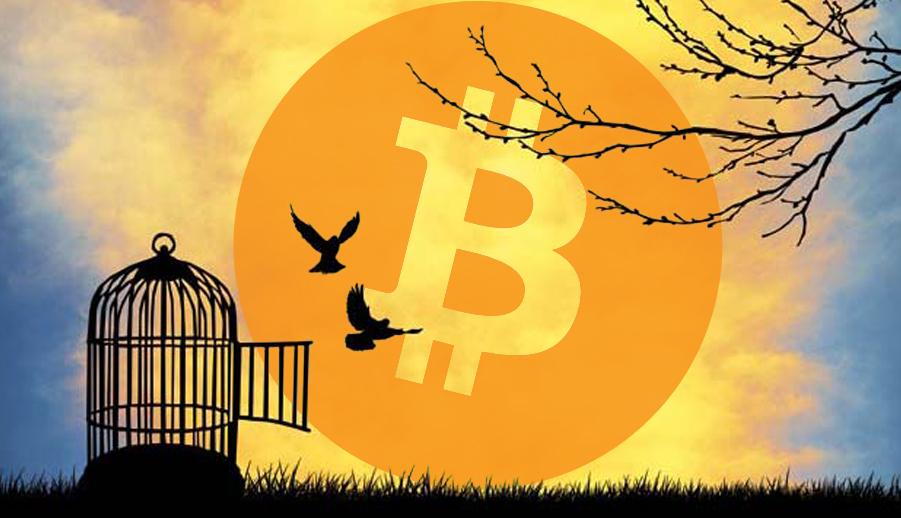 bitcoin liberté financière