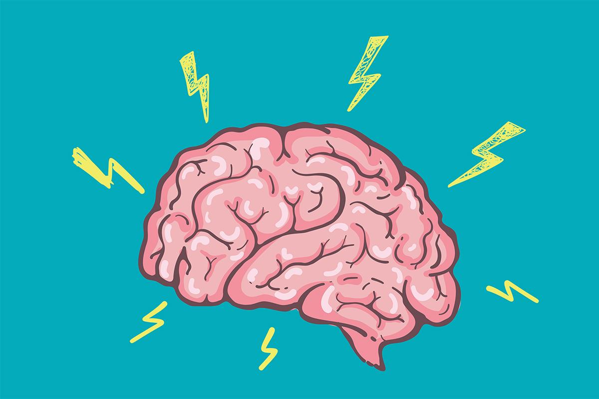 phrase de récupération de portefeuille dans cerveau