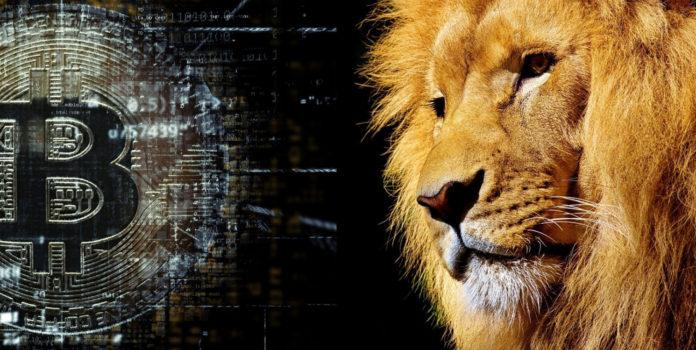 La crypto,réveil de l'Afrique